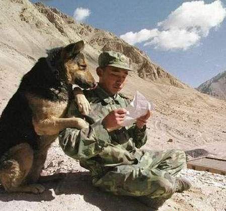 asker mektupları