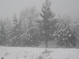 karlı ve sisli hava