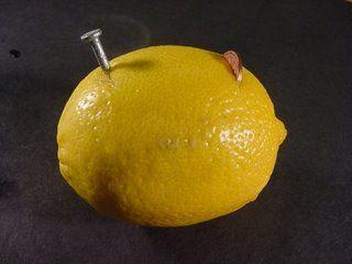 limon deneyi 1