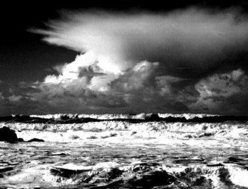 rüzgar eken fırtına biçer